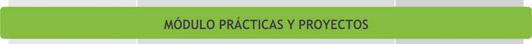 Unidades Curriculares del Módulo Prácticas y Proyectos - Plan de Estudio 2013