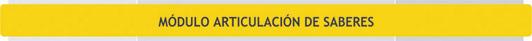 Unidades Curriculares del Módulo Articulación de saberes - Plan de Estudio 2013