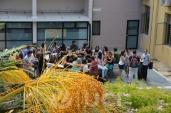 Postales de la Escuela de Verano 2013