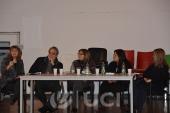 Panel: Relevancia de la Formulación Psicodinámica para la práctica clínica y la investigación